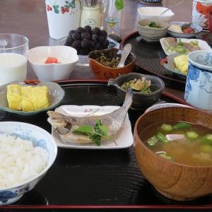 エボダイとしらす入り卵焼きとオクラの味噌汁