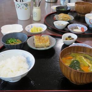 ゆで里芋の卵焼きで朝ごはん