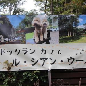 グーちゃんパパの夏休みinル・シアン・ウールー(le・chien・heureux)と南ヶ丘牧場