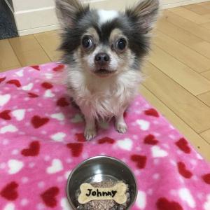Johnny's 10th birthday!