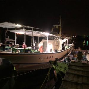 10/6 明石海峡 船ノマセ、ハマチメジロヒラメ好釣!