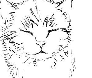 【絵】子猫
