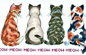 「猫を探しています 十字のステッチ キット DMC綿」2匹目完成。