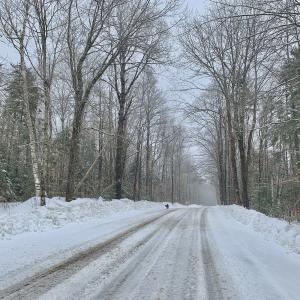 近所ハイキングで吹雪の巻