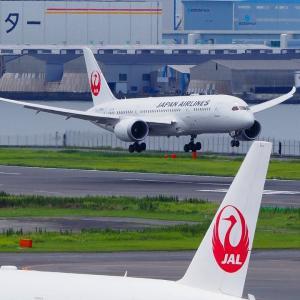 羽田空港 第一ターミナル展望デッキ 2020年7月16日