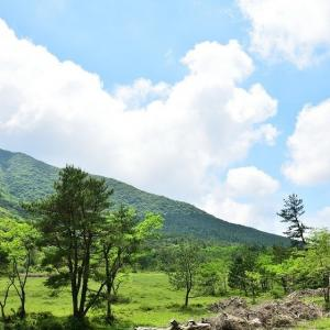 ヤマボウシを求めて雲仙・田代原キャンプ場へ 2021/5/22
