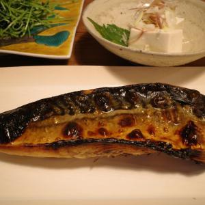鯖の一夜干しに冷奴と豆苗炒めで夕ご飯