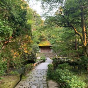 京都・法然院「第21回 悲願会」へ