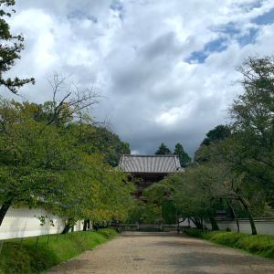 久しぶりの醍醐寺散歩