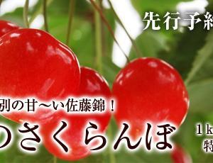 6/27~7/2 関西方面への商品発送について