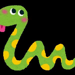 【悲報】巨大ニシキヘビ、14日に捜索打ち切りへ…現場はユーチューバーなどが集結し混乱