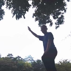 テコンドー&テッキョンで打撃と柔術生活