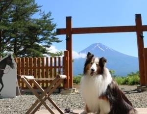 富士山(かちかち山)