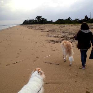 海岸散歩でストレス解消