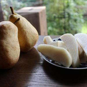 洋梨「マーガレット マリラ」の時期は9月中旬です。味はル・レクチェに似てる!
