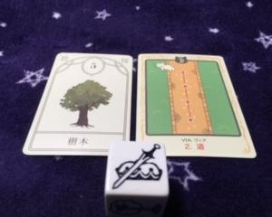 11月13日 本日のイメージオラクルは 底力と知恵と寛容さが武器