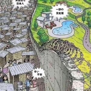 日本の現状 動画その⑨ 日本人が殺されている。