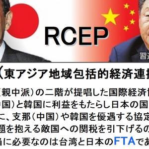 RCEP 国会承認を阻止しよう!
