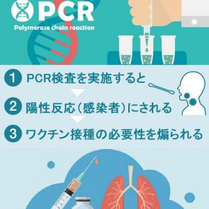 PCR検査陽性者を感染者と報道するのは法律違反です。