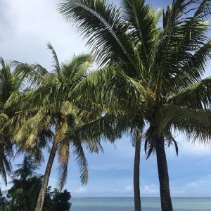 グアムの天気 10月15日 昼いっちーの海況便り