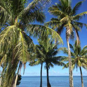 グアムの天気 11月13日 いっちーの海況便り