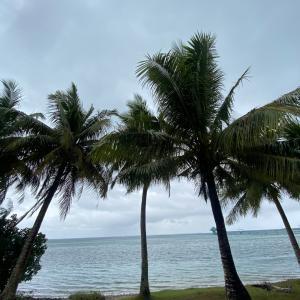 グアムの天気 1月22日 いっちーの海況便り