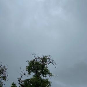 グアムの天気6月6日 りひゃんの国際結婚生活リポート