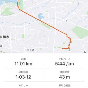 無謀な挑戦⁉️【ハーフマラソンエントリー】