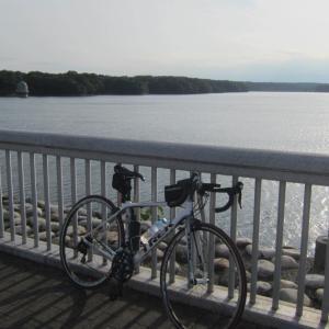 さわやかな夕方の多摩湖【久しぶりに晴れの湖は綺麗】
