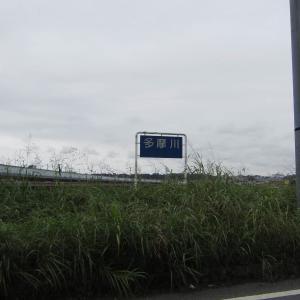 多摩サイをお散歩【羽田の大鳥居まで】