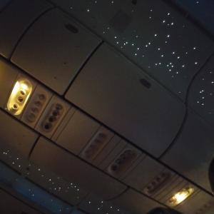 (*^^*)飛行機内での祈りは...
