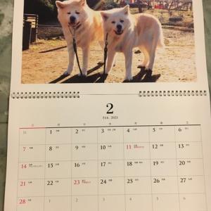 来年のカレンダー(3)