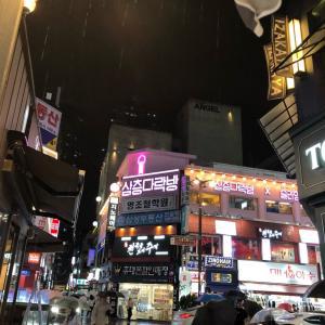 韓国32回目の旅~2度目の釜山〜5日目その3 西面