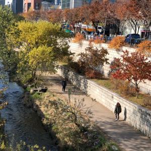 韓国33回目の旅 〜ミステリートラベル〜 7日目@韓流ドラマの世界