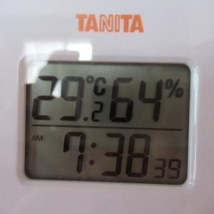 3倍暑いわ~(;´Д`)