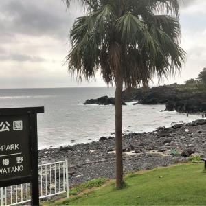 伊豆海洋公園ダイビング 2019年10月6日