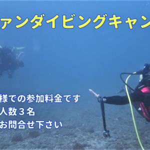 8月限定【平日ダイバーキャンペーン】ご予約受付開始!です!!