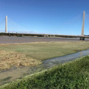 台風19号が去った後の多摩川