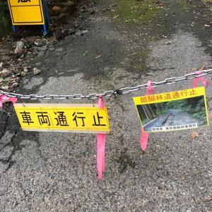 【台風19号】醍醐林道もダメでした