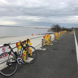 霞ヶ浦 一周サイクリング