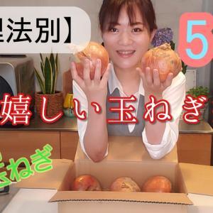 YouTube1か月m(__)m