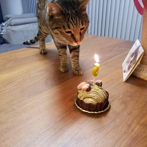 お誕生日おめでとう❤️