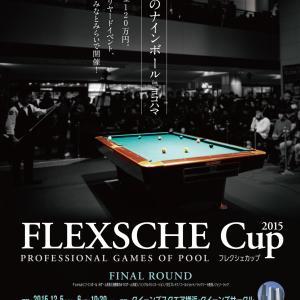 FLEXSCHE Cup 2015