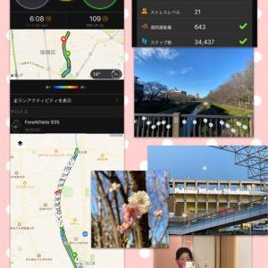 山崎川ハムスターぐるぐる30km走!♪☆