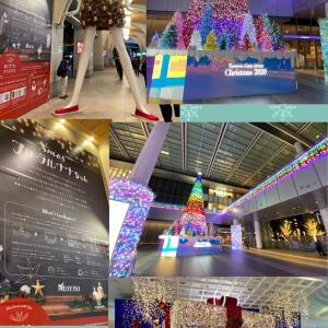 リラックマのしめ飾りと鏡もち昼ラン♪名古屋駅のフローラルナナちゃん♪☆