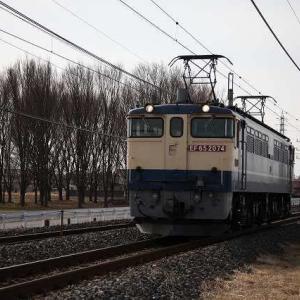 2019年2月撮影_JR貨物