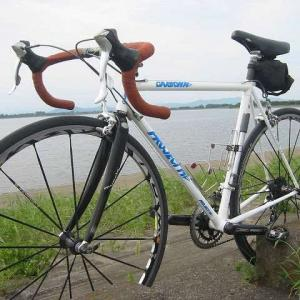 ロードレーサー「PROJECT松永」で「渡良瀬遊水地」までポタリング