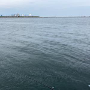 二人釣行。。。