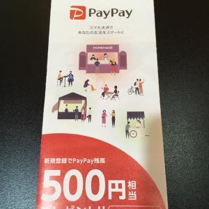 PayPay取り扱い始めました!