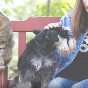 動物たちの心の声に耳を傾けるアニマルコミュニケーター